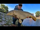 How to catch carp with BREAD! - Surface fishing for carp in Kyoto Japan.