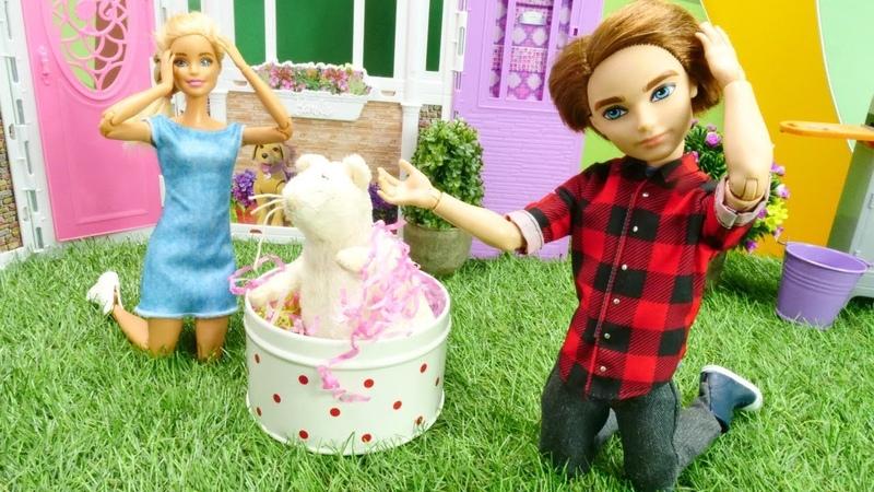 Barbie ailesi. Ken Sevgililer gününe yanlış hediye alıyor