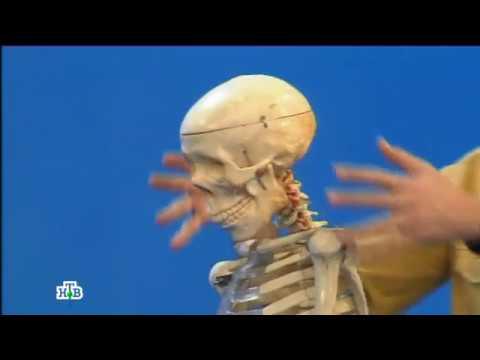 Остеопатия - что это такое