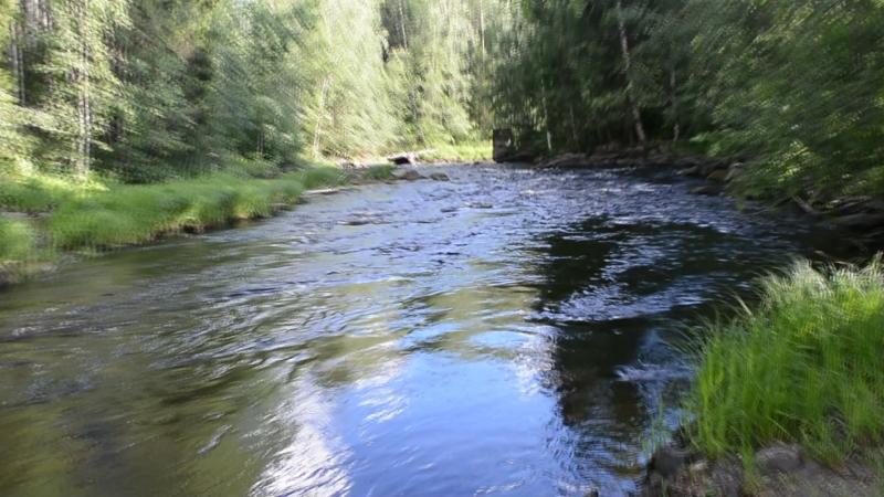 Сортавальский р-он , пос. Рюттю . река Тохмайоки .