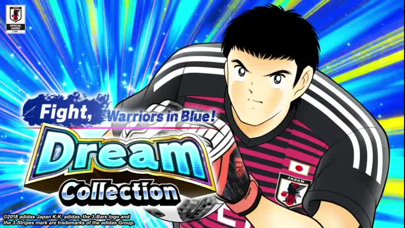 Fight, Warriors In Blue: Dream Collection (16.11.2018)