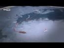 Советский атомный ледокол Арктика первым в мире достиг Северного полюса