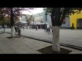 Гадалка-нарушительница в самом центре Саратова