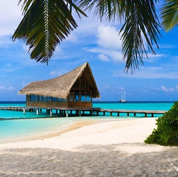 "Туры в Доминикану на 8 ночей со ""все включено"" за 44300 с человека"