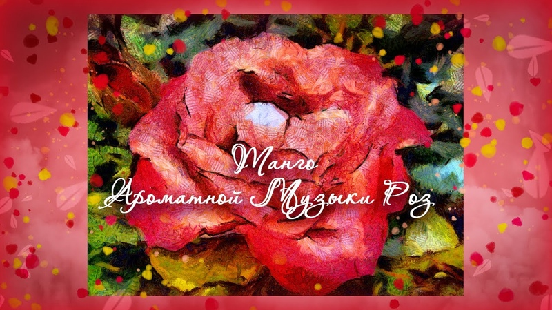 Танго ароматной музыки роз