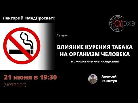 Влияние курения табака на организм человека   Алексей Решетун [16]