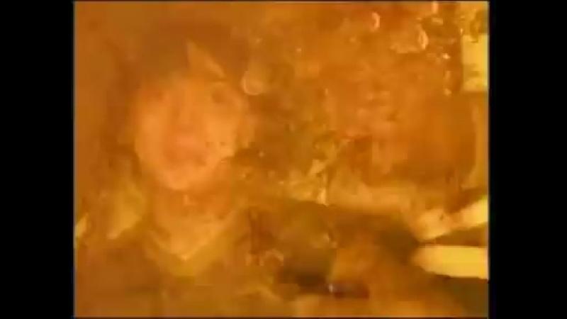 V АВАРИЯ Пей Пиво официальный клип 2000 mp4