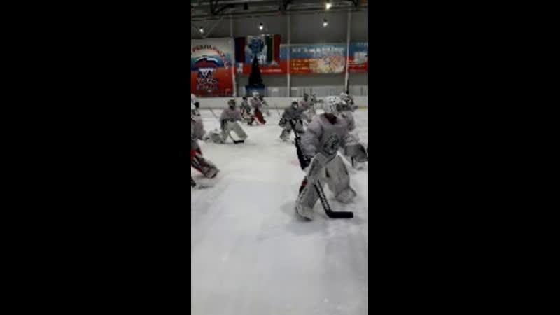 Вратарь (Хоккей)   GOALKE... - Live