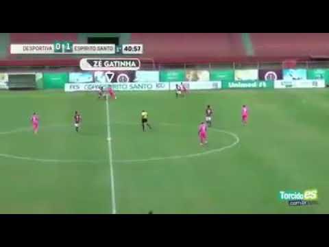 REFORÇO - Melhores momentos do Zé Gatinha o novo reforçodo Botafogo pra 2019