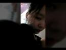 APQ Multicolor black background M V