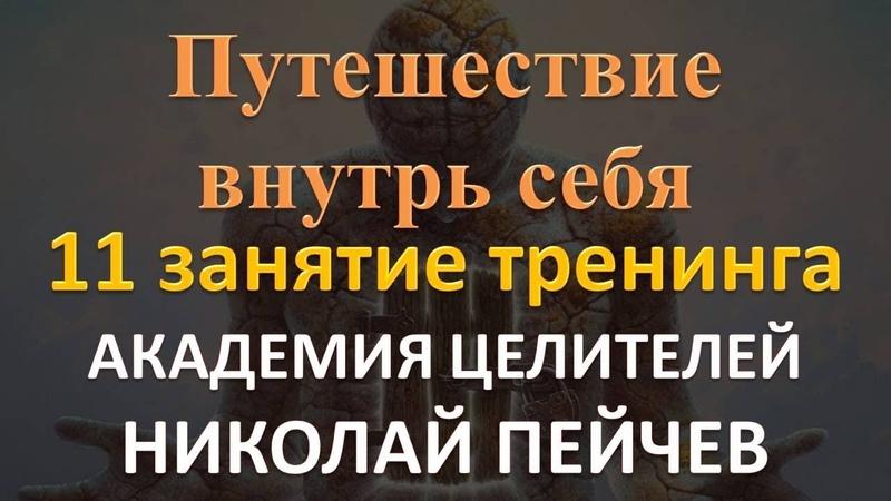 11 занятие тренинга Путешествие внутрь себя Академия Целителей Николай Пейчев
