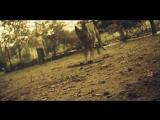 Vanessa Carlton - Nolita Fairytaile.mp4