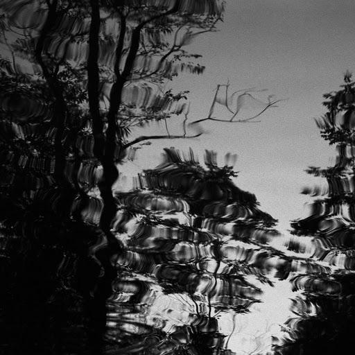 NFS альбом Absorb, Observe, Serve (Transmission from Space Acres)