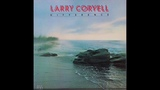 Larry Coryell Difference (Full AlbumVinyl)