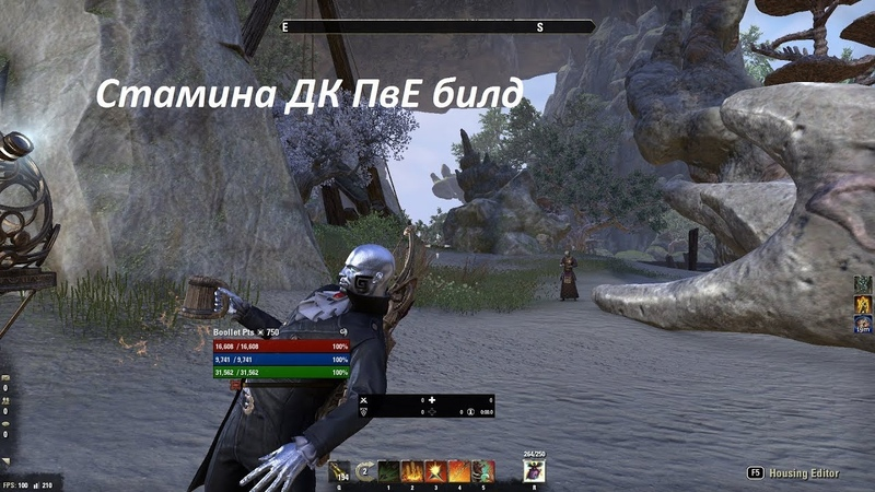 Стамина ДК ПвЕ билд l Stamina Dragonknight PvE Build Summerset