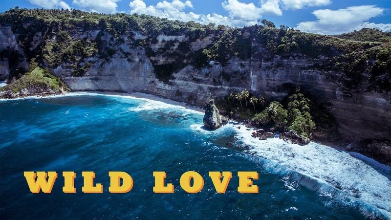PIKA - WILD LOVE (Grey Killer prod.) / ПИКА - ДИКАЯ ЛЮБОВЬ [SKILLZ HUSTLE]