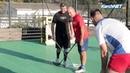 В Керчи появился новый вид спорта - флорбол