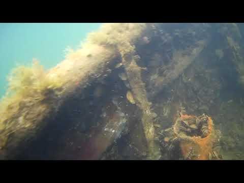 затонувший корабль на Донузлаве