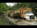 Best Logging Truck Drivers Skill With Dangerous Extreme Fields (Part 16)