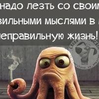 Анкета Иван Шамаев