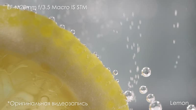 EF-M 28mm f3.5 Macro IS STM__sample video_Come and see_RU_h264