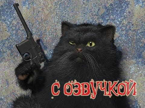 Приколы с котами и смешная озвучка животных – Магия и Кошки от PSO
