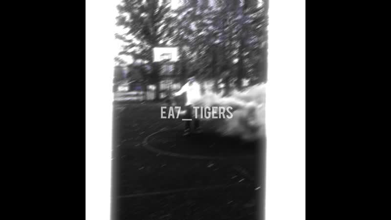 Ea7_tigers