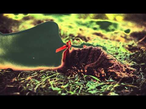 Mr. Gnome ~The Way