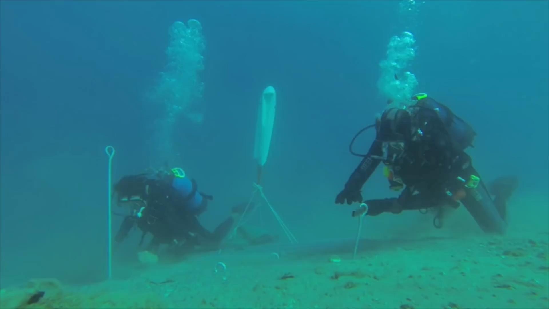 Sergio Gemberini, генеральный директор итальянской компании Ocean Reef, создал Nemo Garden. Владелец двух компаний, занимающийся подводным плаванием в Италии и Калифорнии, во время отпуска в Ноли, придумал интересную идею выращивания растений в море. У Серхио Гамберини возникла идея сада под водой, он мечтал превратить подводное плавание в более интерактивную деятельность. Его первоначальный план состоял в том, чтобы закрепить шар гибкого материала, содержащий вазу с заводом до морского дна. К его удивлению, завод не умер и вырос. Следующим шагом было применить тот же метод, используя семена, которые прорастали в течение 36 часов. На участке площадью 15 м2 в настоящее время имеется семь биосфер, каждая из которых имеет размер комнаты. В каждой сфере насчитывается около 60 растений, питаемых гидропонными инструментами и орошаемых гравитационными системами. Это базилик, чеснок, редис, капуста и клубника, просто чтобы привести некоторые примеры. Специалисты по дайвингу склонны утверждать, что эти растения не будут иметь тех же характеристик, что и на земле. Sergio Gemberini утверждает, что «море самодостаточное, свободный инкубатор». В заливе Ноли Noli температура воды довольно стабильна и, следовательно, предлагает растениям постоянный тепловое питание. Со своей стороны, вода моря действует как фильтр, увлажняя растительный покров. В результате растения, выращиваемые под водой, являются более здоровыми и более качественными. Аромат и вкус более интенсивны, чем у растений, выращенных на Земле. Биосферы - идеальные теплицы, так как никакие паразиты не могут их достичь. Поэтому отпадает необходимость в пестицидах или других химических веществах. Естественное испарение обеспечивает испарение пресной воды внутри сфер, позволяет систематически орошать растения. Кроме того, эксперименты показали, что эти растения растут быстрее, чем их терригенные коллеги. Серхио Гамберини работает с экспертами в области сельского хозяйства, чтобы улучшить структуру и долговечность построенн
