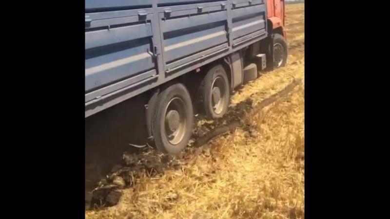 Мамонт застрял в Поле (КамАЗ 6520 Зерновоз) PEREGRUZ