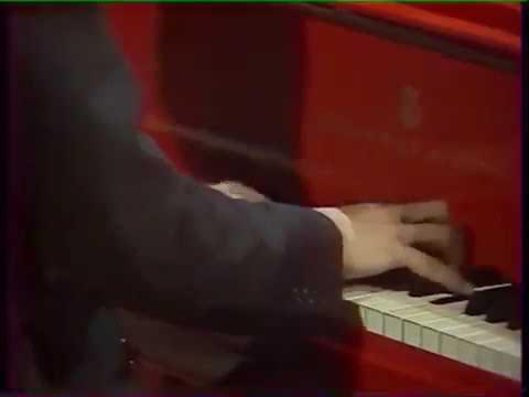 Руки пианиста № 0032