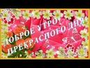 Доброе утро очень красивая музыкальная видео открытка с добрым утром хорошим днем СУПЕРПОЗИТИВ