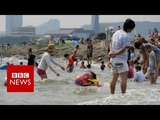 Japan heatwave declared natural disaster - BBC News