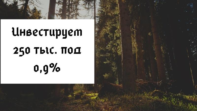 Быкова Елена - инвестируем 250 тыс. (9.09.2018)