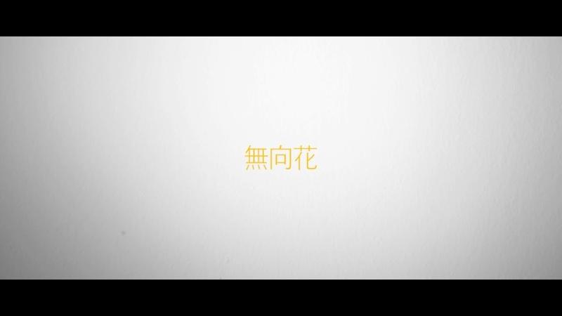 임팩트[IMFACT] _ 무향화[無向花] (Covered by 지안)