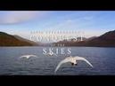 Покорение небес Дэвида Аттенборо. Серия 1. Первые летающие