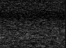 Вик Дарчинян vs Ирэн Пачеко полный бой 16 12 2004