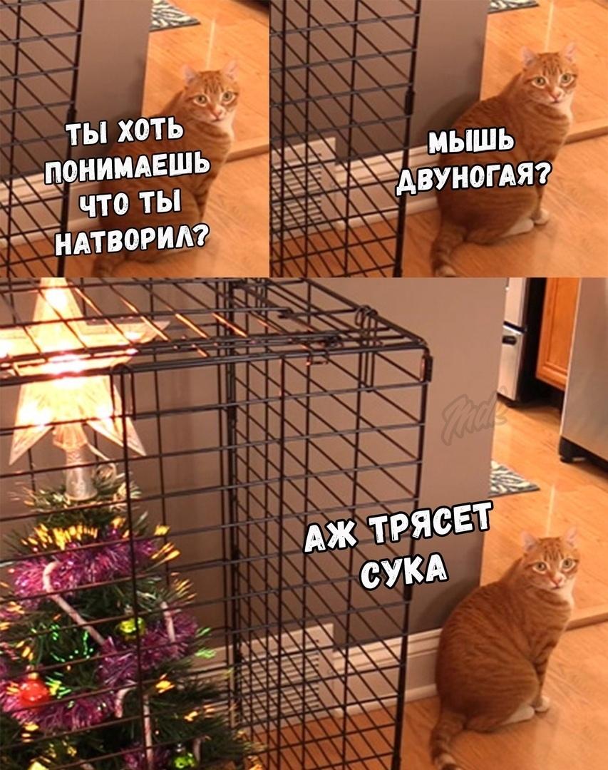 boaykvomA0I - Готовы к новогодним праздникам?