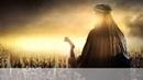 Случай из жизни халифа Умара ибн аль Хаттаба