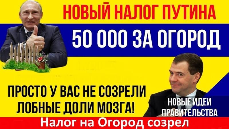 Дождались В РФ вступил в силу налог на огород