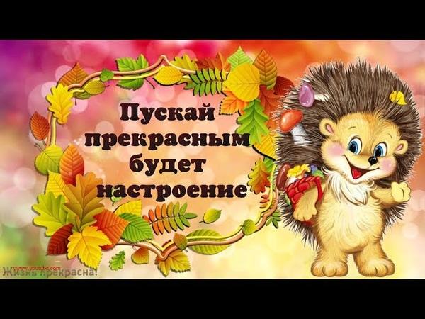 Пускай прекрасным будет настроение! Хорошего осеннего денька!