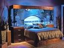 Необычайно красивые аквариумы