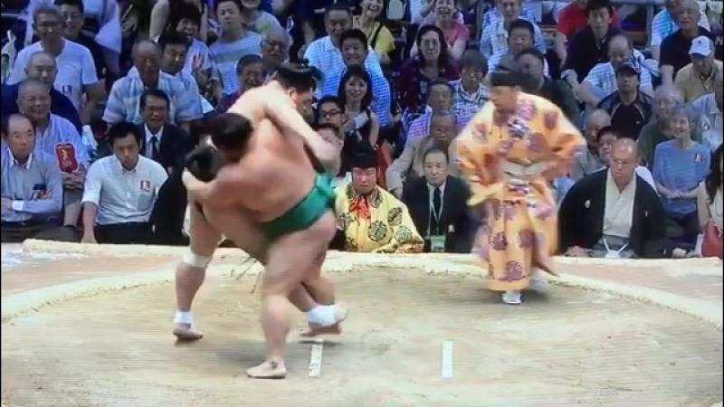 Harumafuji - Yoshikaze