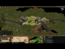 TheViperAOC Age of Empires 2 1v1 Arabia vs vivi Famous Hoang Rush