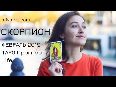 СКОРПИОН ТАРО Прогноз ФЕВРАЛЬ Life от Diva V S