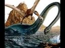 История вымерших животных (плезиозавры)