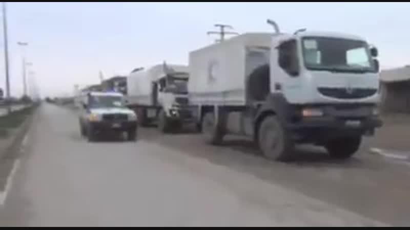 Организация красный полумесяц из территории режима вошла в Рожаву для помощи жителям