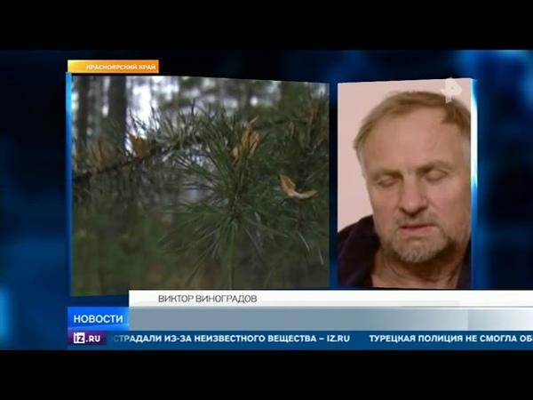 Пропавший в тайге 18 дней назад мужчина самостоятельно нашел путь домой