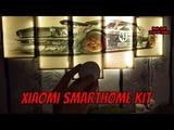 Умный дом Xiaomi smarthome KIT обзор минимального бюджетного комплекта