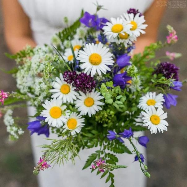 пусть сегодня у вас будет тысяча причин для улыбки и ни одной для грусти... волшебного вам дня!